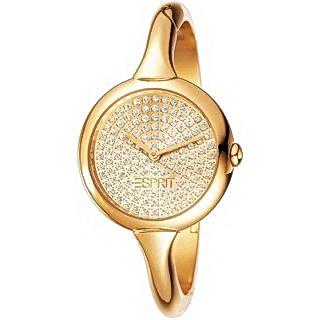 Наручные часы Esprit ES100412004