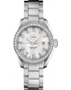 OMEGA MASTER CO‑AXIAL LADIES' 38,5 MM 231.15.30.61.55.001
