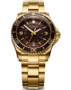 Мужские часы VICTORINOX V241607
