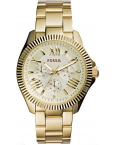 Женские часы FOSSIL AM4570