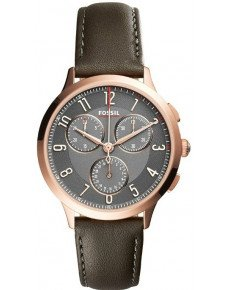 Женские часы FOSSIL CH3099