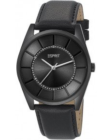 Мужские часы Esprit ES104201003