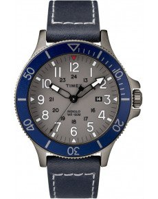 Мужские часы TIMEX Tx2r45900